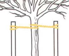 baumband zur befestigung von geh lzen und pflanzen. Black Bedroom Furniture Sets. Home Design Ideas